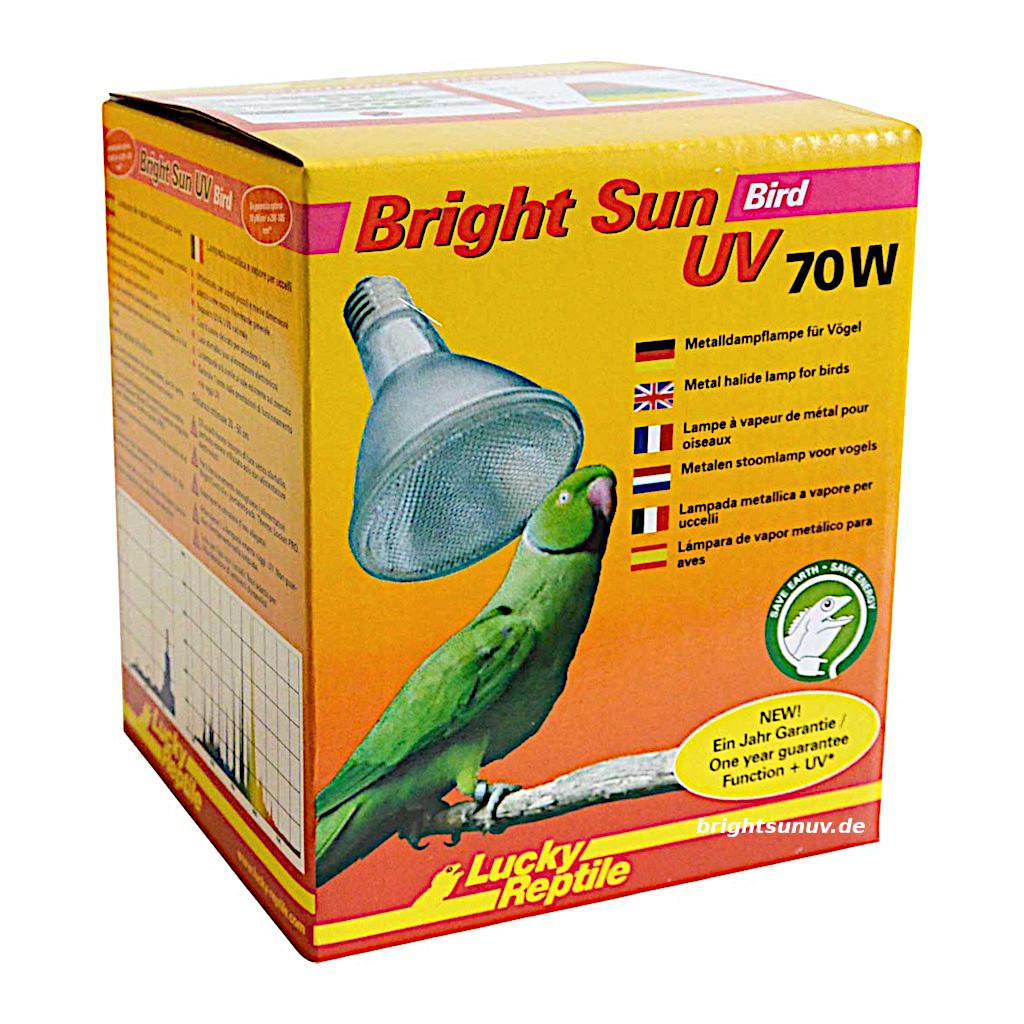 Lucky Reptile Bright Sun UV Bird